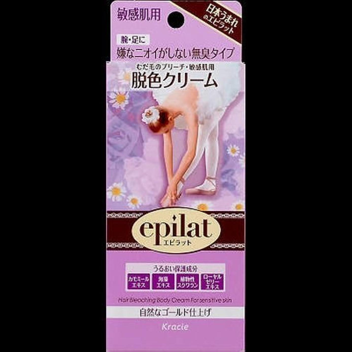 【まとめ買い】エピラット 脱色クリーム 敏感肌用 55g+55g ×2セット