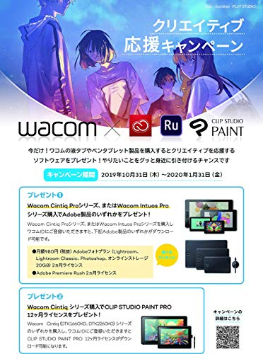 『【Amazon.co.jp限定】ワコム 液タブ Wacom Cintiq 22 FHD ブラック アマゾンオリジナルデータ特典付き DTK2260K1D』の6枚目の画像