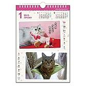 NK8813  にゃんにゃん川柳カレンダー  2015年度版 (猫)