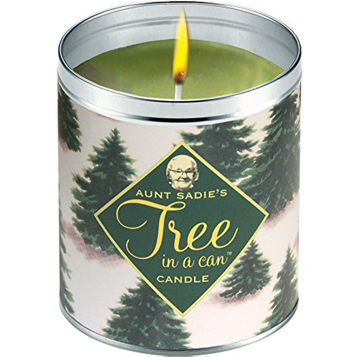 ミントブレンド広い叔母Sadie 's Snowy Tree Candle、Pine by Aunt Sadies
