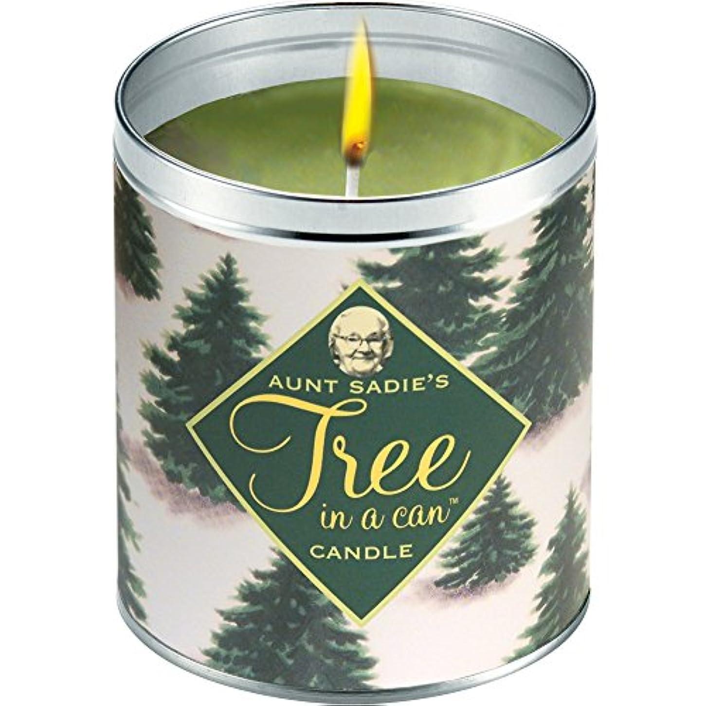 第五おしゃれな生まれ叔母Sadie 's Snowy Tree Candle、Pine by Aunt Sadies