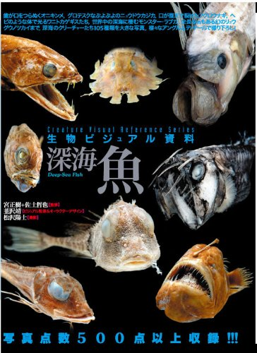 生物ビジュアル資料 深海魚の詳細を見る
