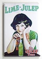 ライムJulep Soda Sign冷蔵庫マグネット( 2x 3インチ)