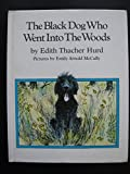 The Black Dog Who Went into the Woods