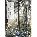 ドキュメント 道迷い遭難 (ヤマケイ文庫)
