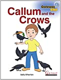 Gateway Gold Level 1 Big Book 1 - Callum and the Crows