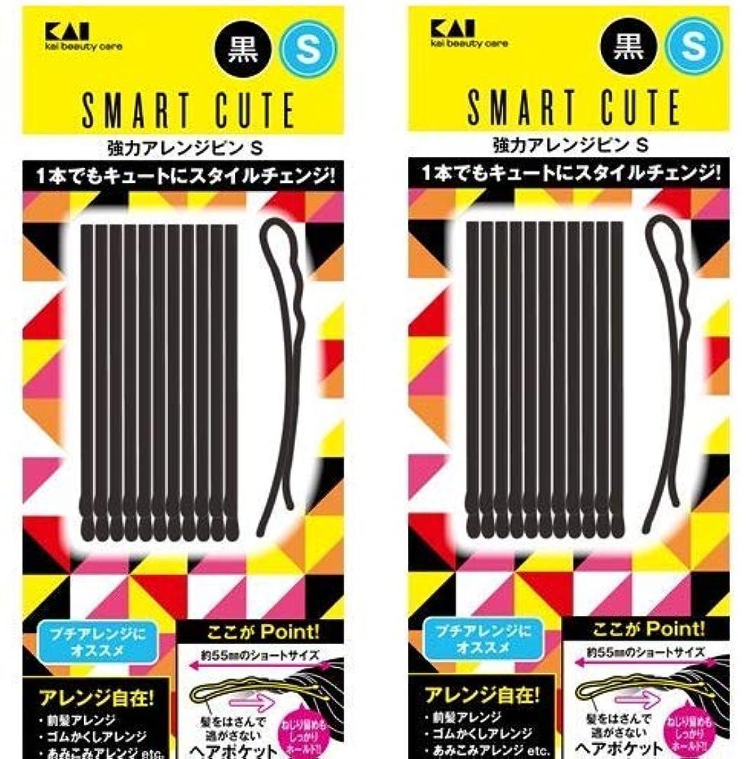 感覚冷蔵庫敵意スマートキュート(SmartCute) 強力アレンジピンS (黒) HC3318 2個セット