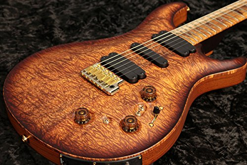 Paul Reed Smith / Private Stock #6677