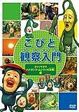 こびと観察入門 オトリマダラ ハナガシラ(ムシクイの友情)編[DVD]