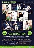 東京ヤクルトスワローズ ~2017~ トレーディングmini色紙 BOX商品 1BOX = 10枚入り、全16種類