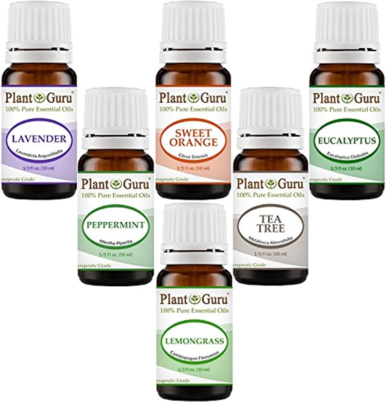 電気的成功光電Essential Oil Variety Set Kit - - 100% Pure Therapeutic Grade 10ml. Set includes- (Peppermint, Lavender, Sweet...