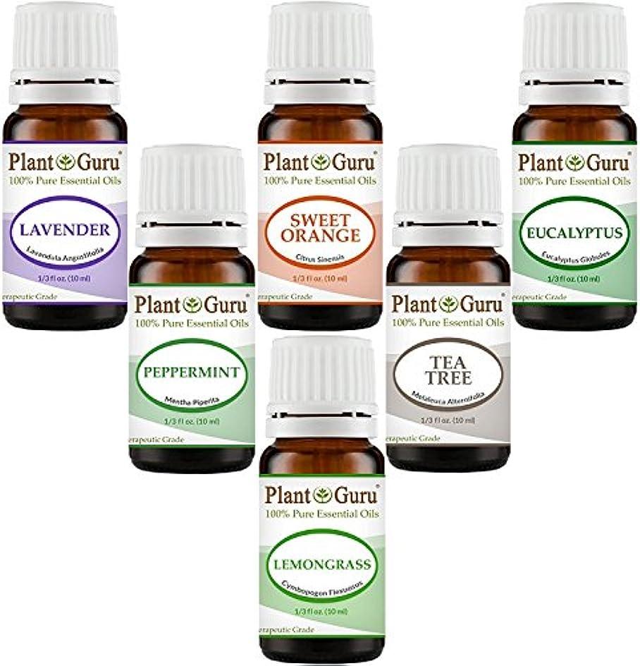 ケイ素新年言うEssential Oil Variety Set Kit - - 100% Pure Therapeutic Grade 10ml. Set includes- (Peppermint, Lavender, Sweet...