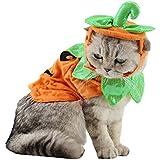ANIAC Cat Pumpkin Hat Cloak Halloween Custume Cape Poncho for Kitty Small Medium Sized Dog