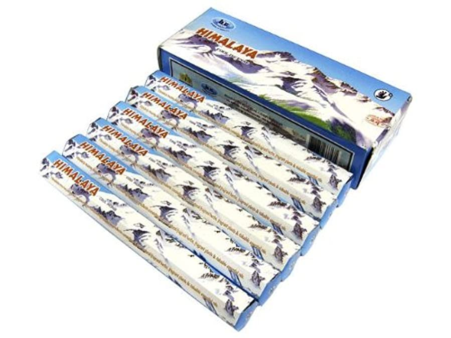 適応的飢饉の間でBIC(ビック) ヒマラヤ香 スティック HIMARAYA 6箱セット