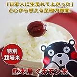 熊本産 玄米 くまモン米 (ひのひかり) 10キロ 平成27年度産 無添加 健康思考