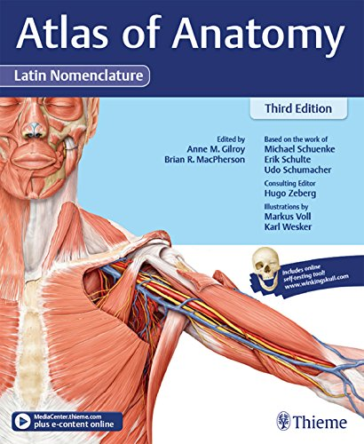 Download Atlas of Anatomy, 3e Latin (English Edition) B06Y49KGCK