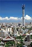 204ピース ジグソーパズル プチ 四季の詩 東京スカイツリー(R) 晴天の下で スモールピース(10x14.7cm)