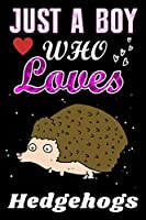 Just a Boy who loves Hedgehogs: Hedgehogs Lover notebook or dairy, Perfect Hedgehogs lovers Notebook gift for Boy