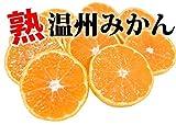 史上最安値への挑戦 ご自宅用に 熊本県産 熟 温州みかん2.5kg(M-3L)