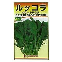 カネコ種苗 園芸・種 KS200シリーズ ルッコラ ロケットサラダ 野菜200 281