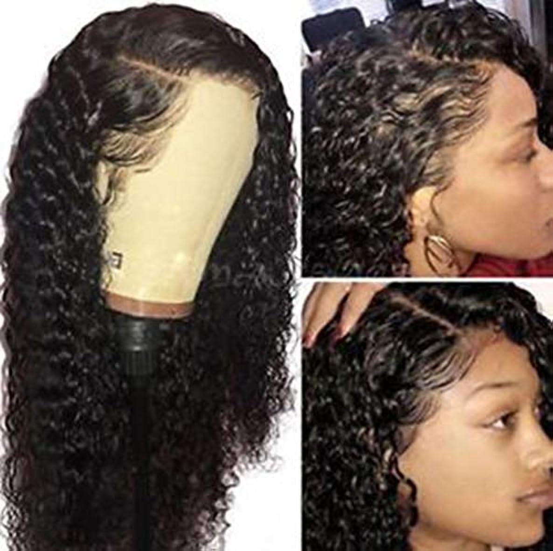 打倒ドメイン推進女性かつらカーリーウェーブブラジルのバージンヘアレースフロントかつらプレ摘みヘアラインレミーの髪