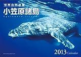世界自然遺産・小笠原諸島 カレンダー 2013年