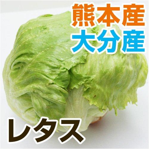 熊本県・九州産 レタス 1玉 【 野菜セット と同梱できます 】【 九州 熊本 野菜 葉物 れたす 】