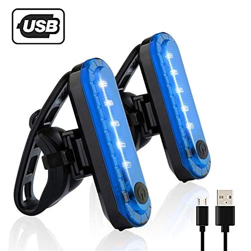 運命的な承認する罰自転車 テールライト 2個セット USB充電LEDライト 防水点滅サイクルライト 4点灯モード セーフティーライト 夜間走行の視認性をアピール 簡単装着 (青)