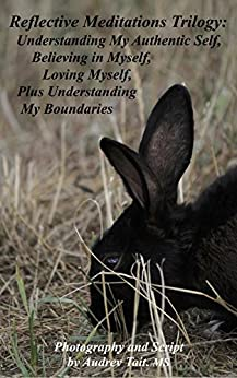 Reflective Meditations Trilogy: Understanding My Authentic Self, Believing in Myself, Loving Myself, Plus Understanding My Boundaries by [Tait, Audrey]