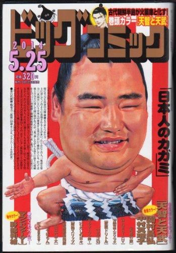 ビッグコミック 2014年5月25日号 鶴竜