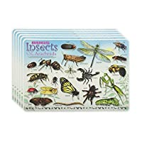 M. Ruskin Company Bugs & Insects Placemat Set of 6 [並行輸入品]