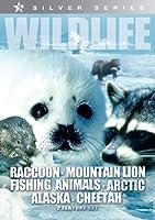 Wildlife: Raccoon Mountain Lion Fishing Animals [DVD] [Import]