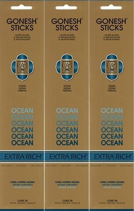 要塞ヒロインアクセルGONESH ガーネッシュ OCEAN オーシャン 20本入り X 3パック(60本)