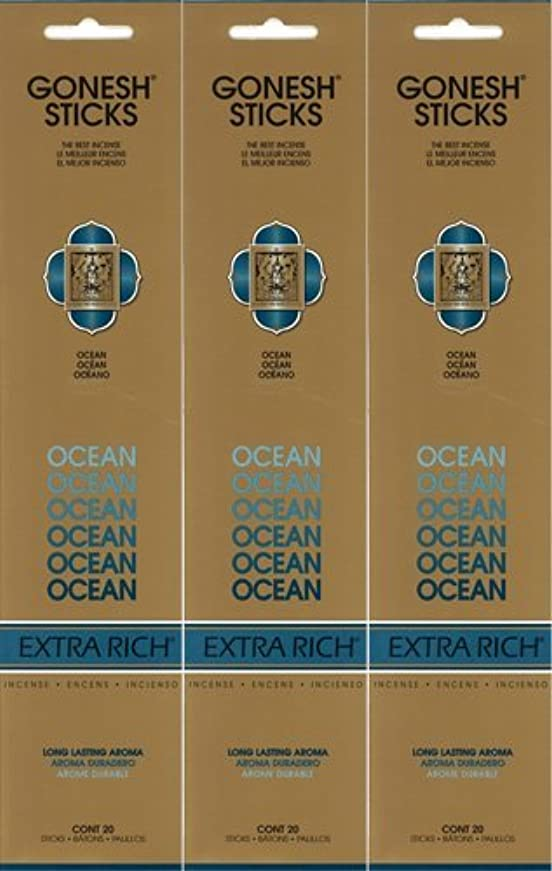 スタンドナビゲーションルーフGONESH ガーネッシュ OCEAN オーシャン 20本入り X 3パック(60本)