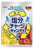 カバヤ食品 塩分チャージキャンディ 110g×10袋