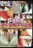 女子校生直下型胸チラ盗撮 [DVD]
