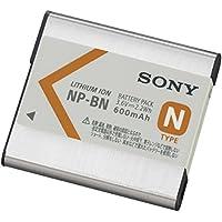 ソニー SONY リチャージャブルバッテリーパック Nタイプ NP-BN