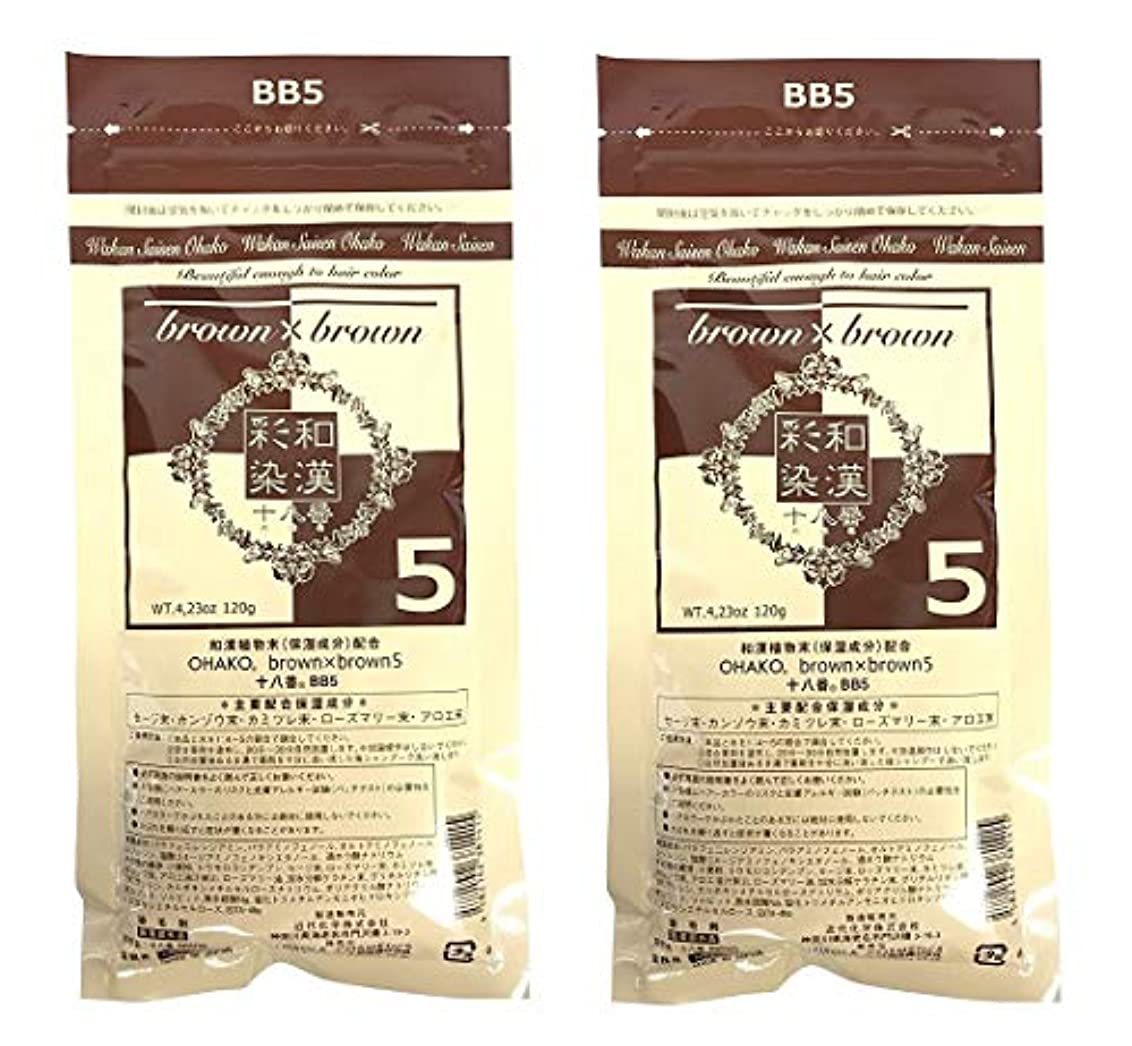 一貫性のない出席混雑【2個セット】グランデックス 和漢彩染 十八番 120g BB5