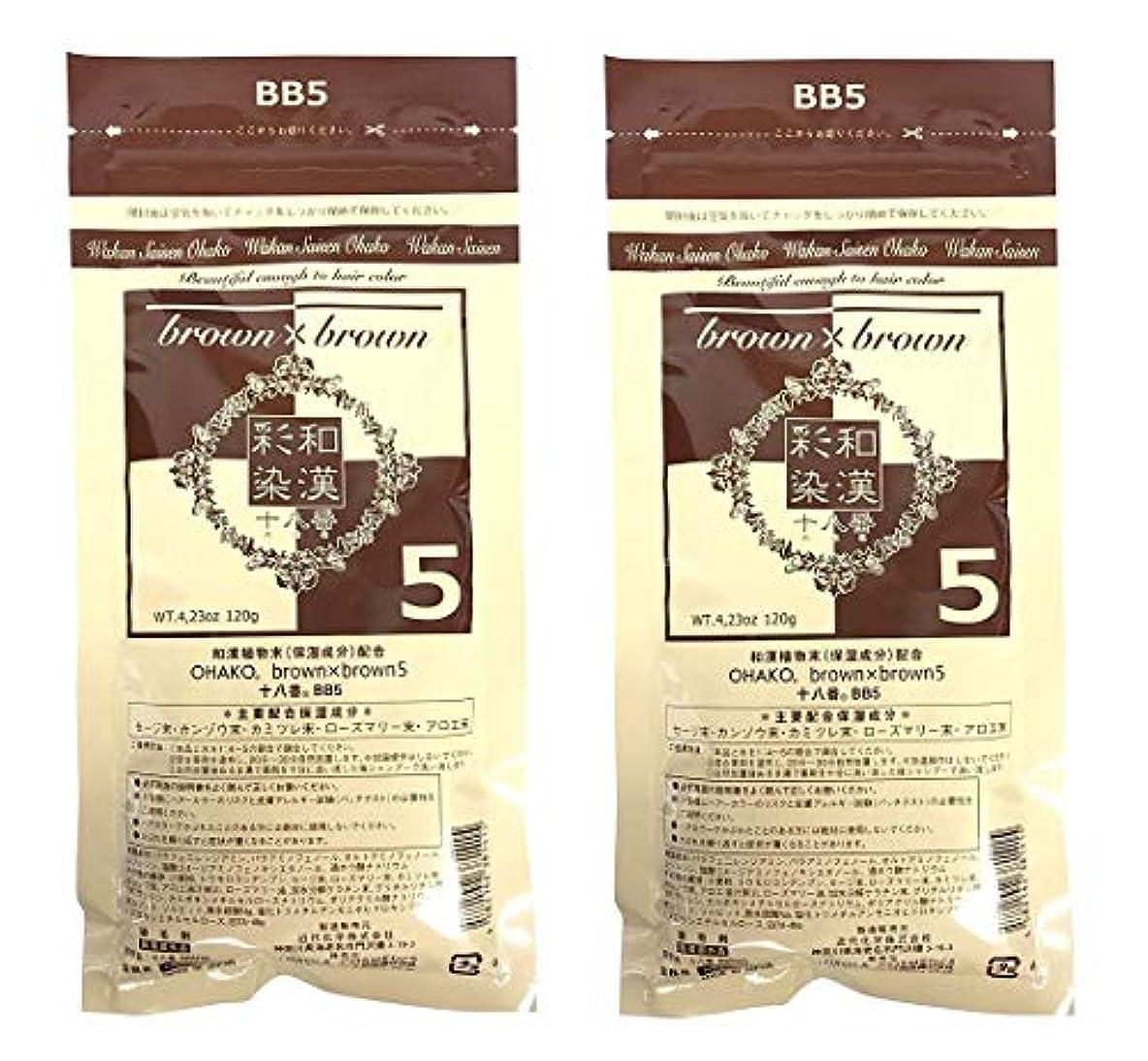 【2個セット】グランデックス 和漢彩染 十八番 120g BB5