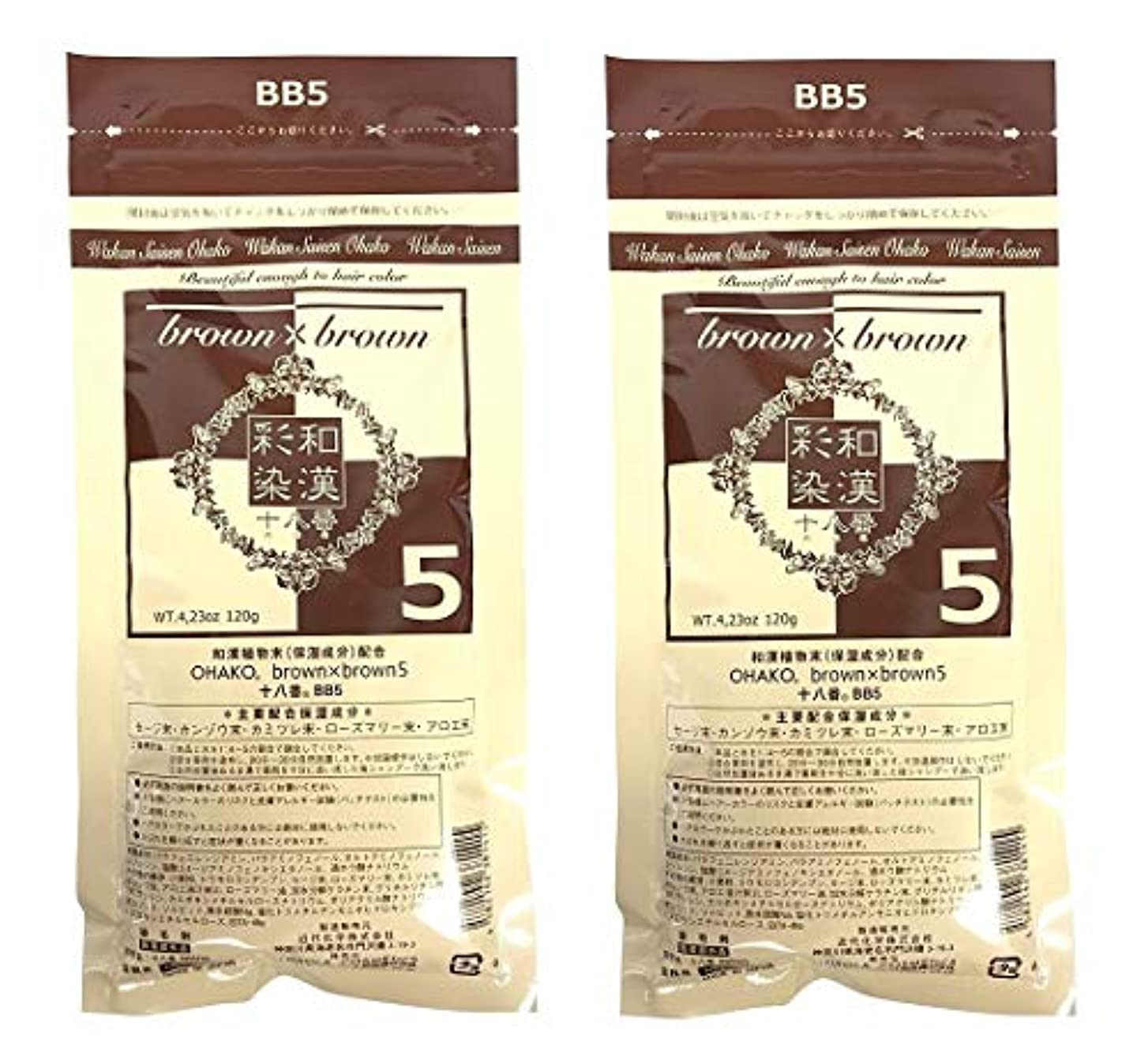 手荷物ひらめき壁紙【2個セット】グランデックス 和漢彩染 十八番 120g BB5