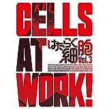 はたらく細胞 アプリ はたらく細胞 アプリ いつから はたらく細胞 アニメ はたらく細胞 声優 はたらく細胞 漫画 はたらく細胞 アニメ いつでもはたらく細胞 アプリ 事前登録開始 はたらく細胞 アプリ いつでもはたらく細胞 アプリ 事前登録 はたらく細胞アプリ 事前登録