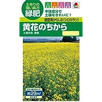 【緑肥】 タキイ種苗 緑肥用からしな(シロカラシ) 黄花のちから
