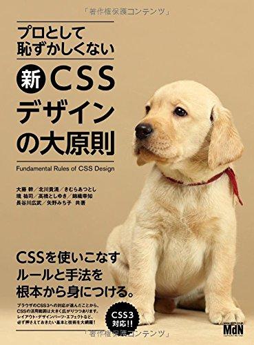 プロとして恥ずかしくない 新・CSSデザインの大原則の詳細を見る