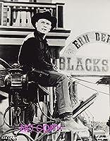 大きな写真「荒野の七人」馬車のユル・ブリンナー