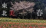 東北美 春 Beauty of Tohoku 美しい東北