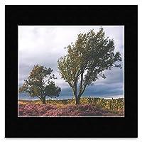 ART OF TREES - Print 10 Mini Poster - 25.9x30.1cm