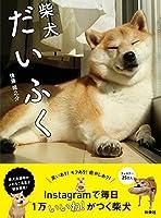 日本 柴犬 韓国に関連した画像-05