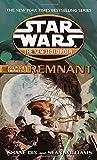 Remnant: Star Wars Legends (The New Jedi Order: Force Heretic, Book I) (Star Wars: The New Jedi Order - Legends)