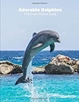 Adorable Dolphin Full-Color Picture Book: Dolphin Picture Book for Children, Seniors and Alzheimer's Patients -Mammals Wildlife Nature