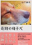 奇跡の母子犬 画像